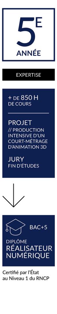 CURSUS-ANIMATION-FR-RUBIKA-ANNÉE-55