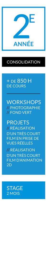 CURSUS-ANIMATION-FR-RUBIKA-ANNÉE-2