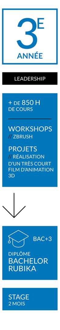 CURSUS-ANIMATION-FR-RUBIKA-ANNÉE-3